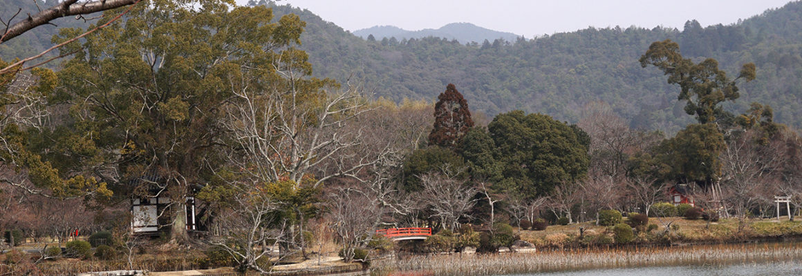 Kyoto – For The Love of Scenery
